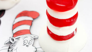 CAT IN THE HAT DR. SEUSS TREATS