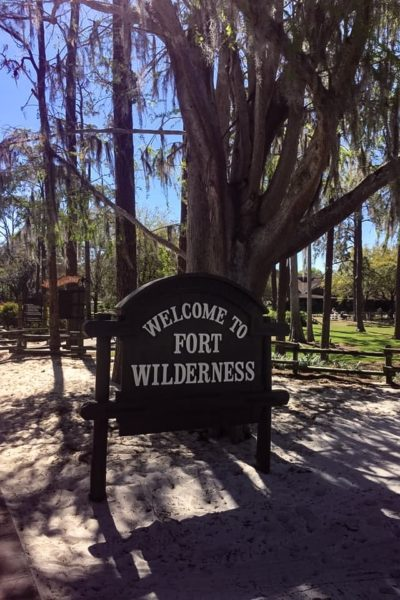 Thematically, the wilderness is a big part of the Disney story. Here are five reasons why you should choose to camp at Fort Wilderness.