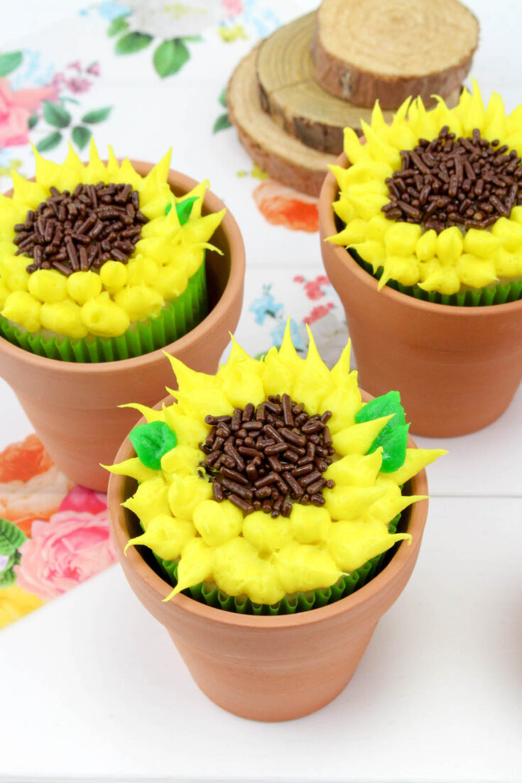 Everyone loves Sunflowers and they make people smile. This cute Sunflower Cupcakes recipe is perfect for any occasion including Mother's Day.
