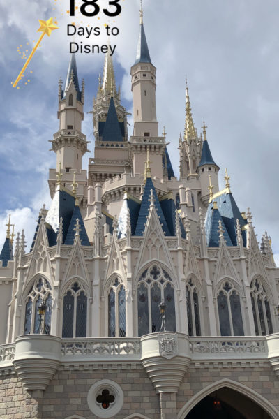 These are some fun ways to prepare kids for a Disney World trip that will make them more equipped and take some of the potential burden off your shoulders.