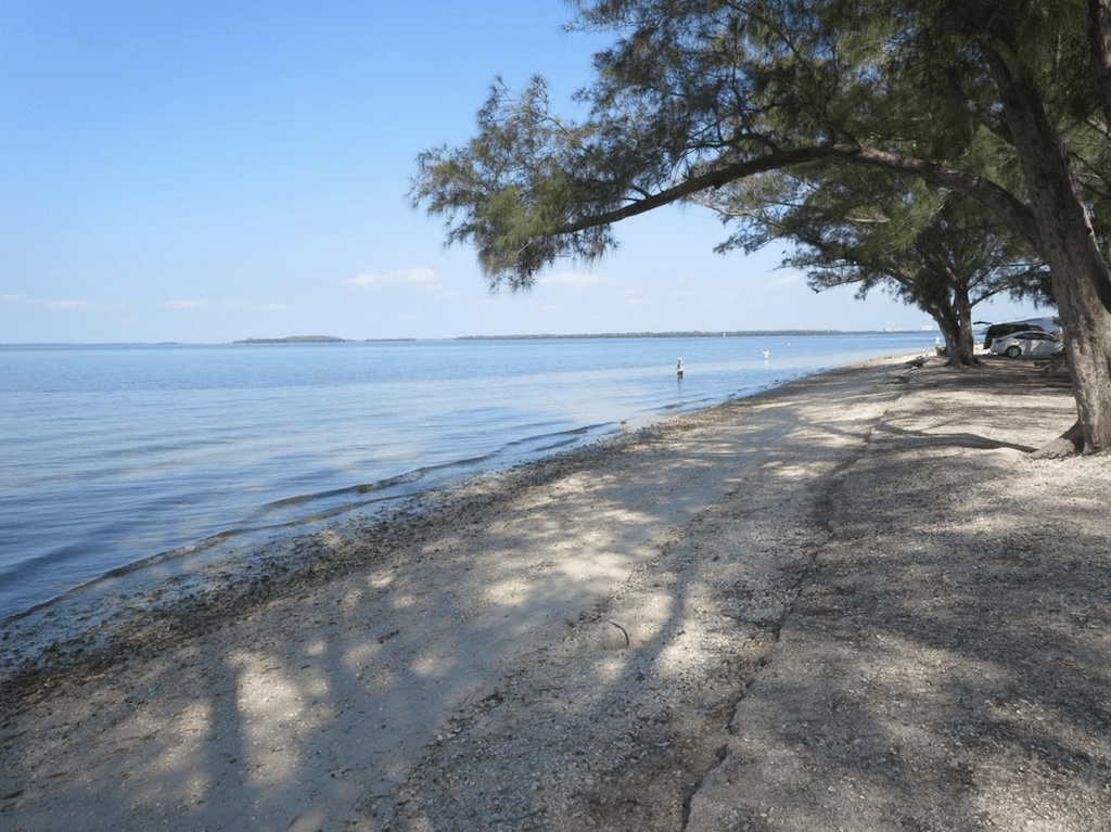 With only a little effort you can kick the sand from your shoes and visit some of Florida's most interesting Gulf Islands or explore wilderness areas that have been left virtually untouched by the ravages of time.