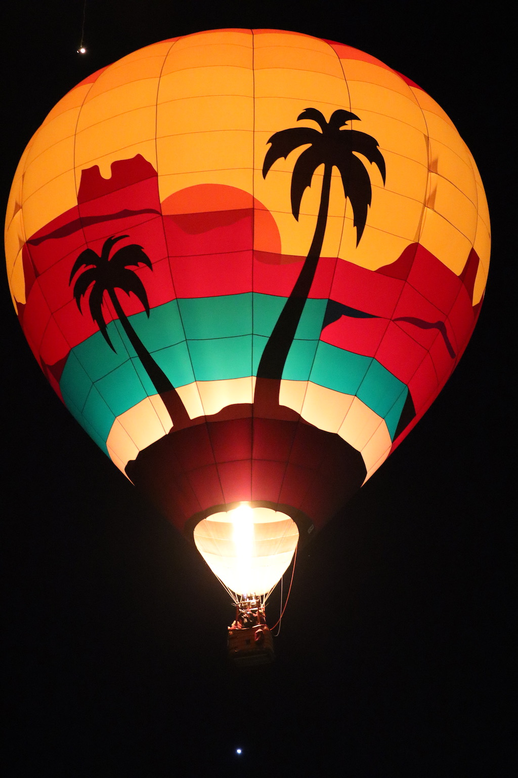 palm tree hot air balloon