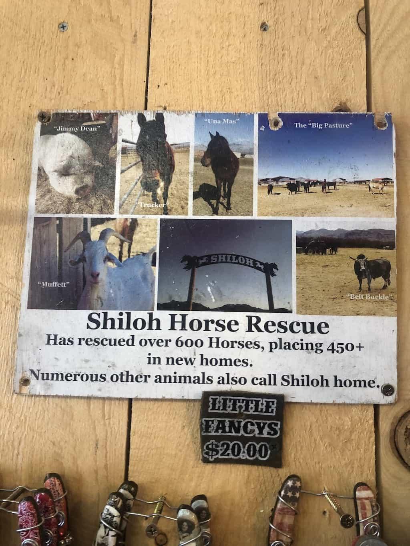 shiloh horse rescue horseshoes