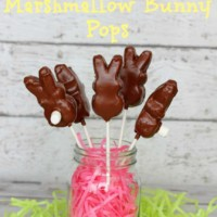 Easter Marshmallow Bunny Pops Recipe