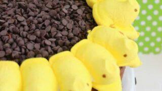 Peeps Sunflower Cake - Easter Treat