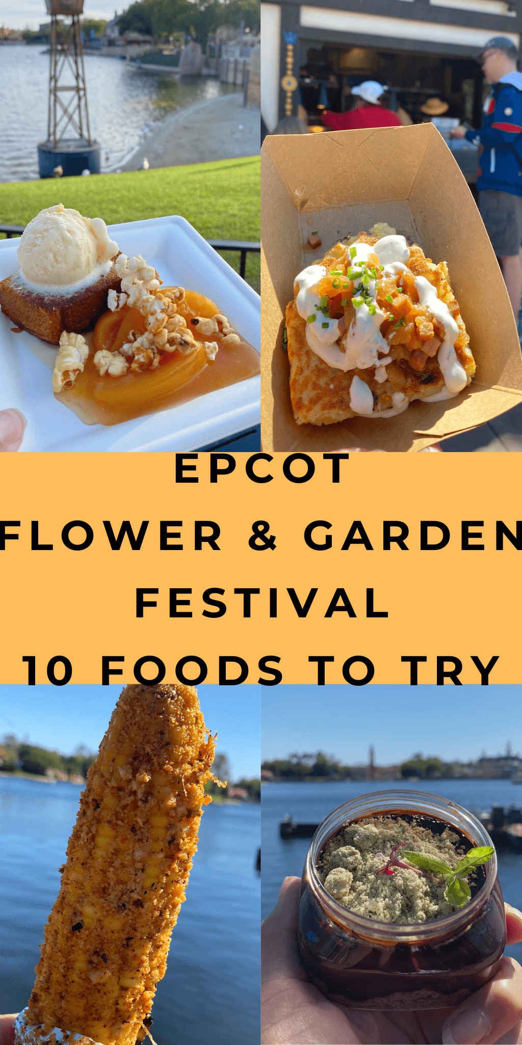 Eating Around the World at Epcot Flower and Garden 3