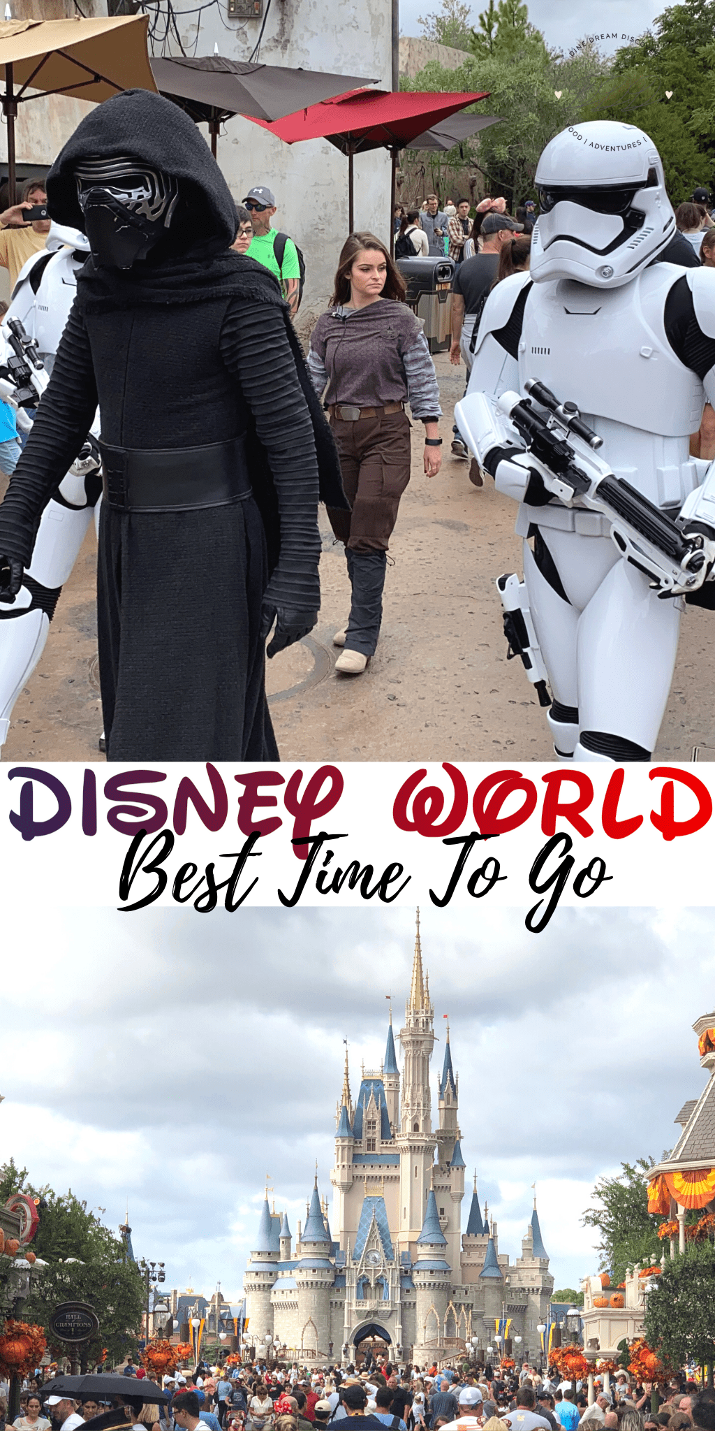 Best Time to Go to Disney World During the Year