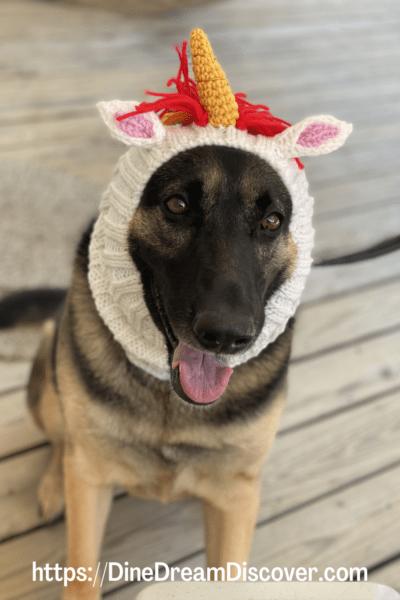 unicorn dog snood