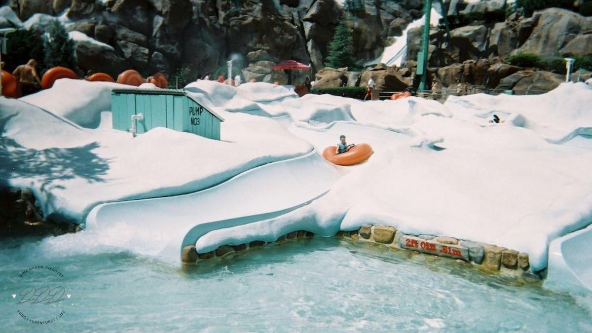 Blizzard Beach Reopened at Disney World