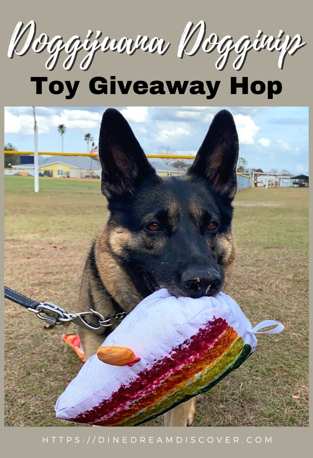dog toy giveaway