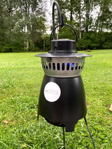 mosquito free backyard