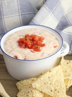 Slow Cooker 2 Ingredient Queso Blanco Dip