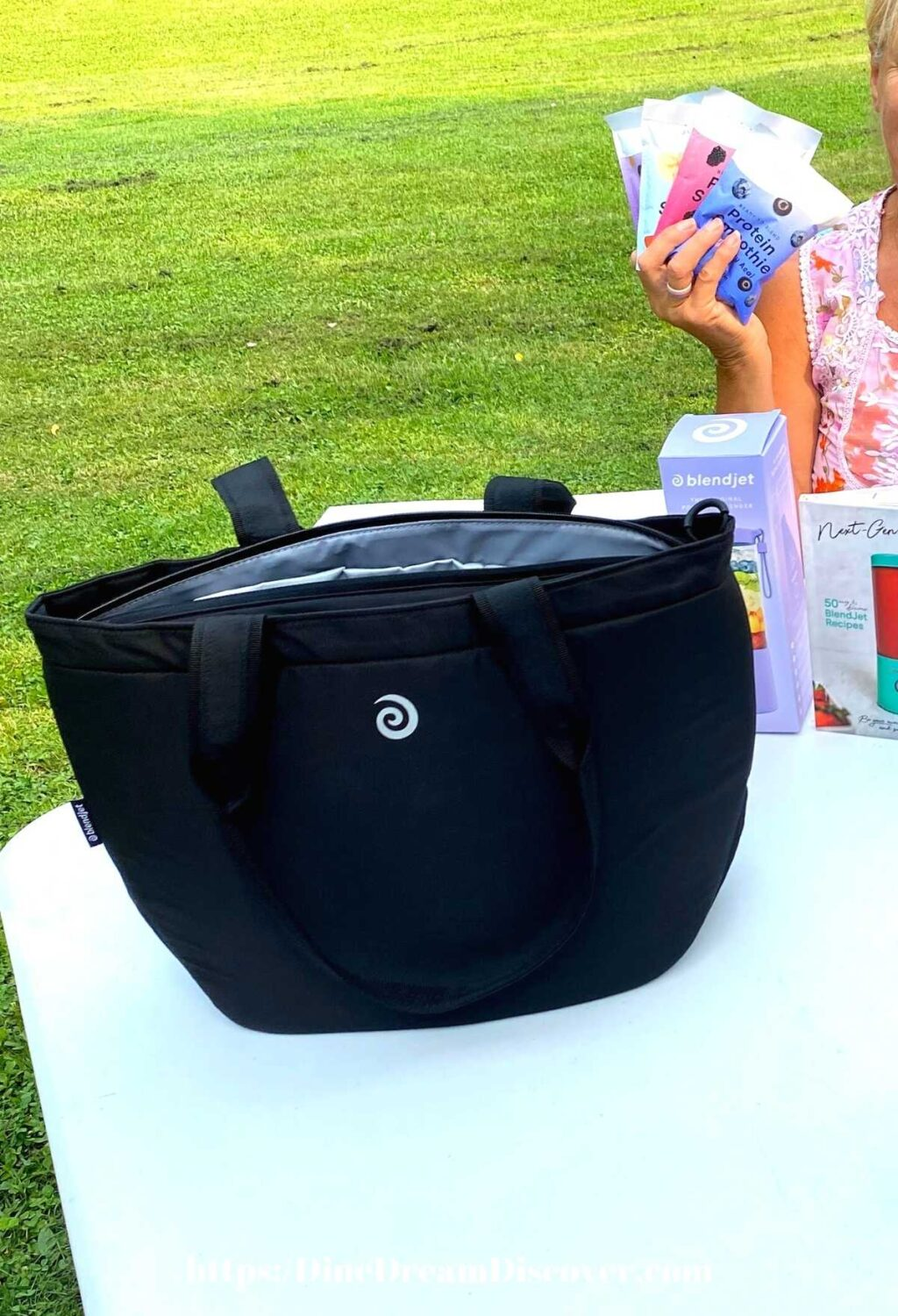 JetSetter Insulated Tote