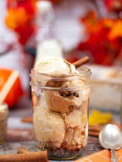No Churn Pumpkin Cinnamon Ice Cream